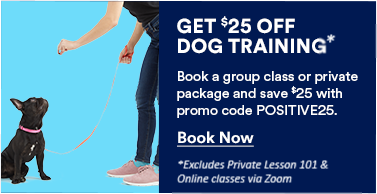 Get $25 Off Dog Training