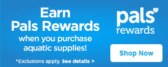 Earn pal rewards!